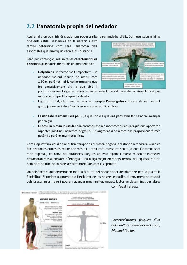 2.2 L'anatomia pròpia del nedadorAvui en dia un bon físic és crucial per poder arribar a ser nedador d'èlit. Com tots sabe...