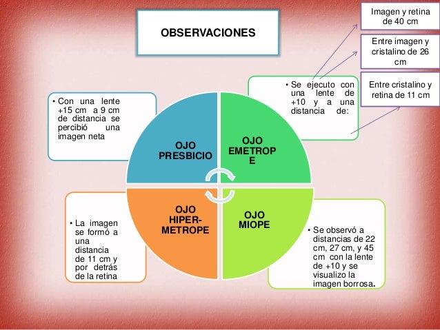 Anatomia del ojo y optica de la vision