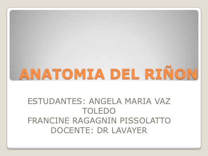 ANATOMIA DEL RIÑONESTUDANTES: ANGELA MARIA VAZ           TOLEDOFRANCINE RAGAGNIN PISSOLATTO    DOCENTE: DR LAVAYER