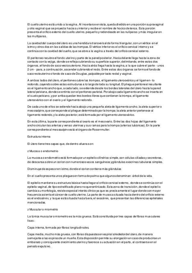 Contemporáneo Anatomía Del árbol De Palma Ideas - Anatomía de Las ...