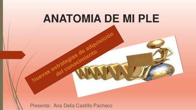 ANATOMIA DE MI PLE Presenta: Ana Delia Castillo Pacheco