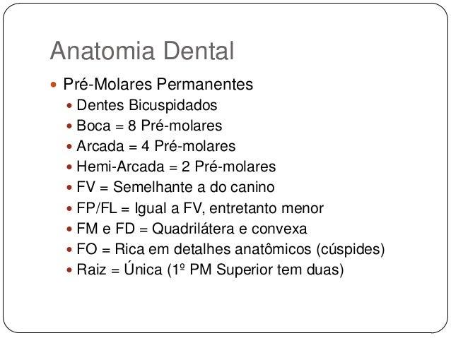 Suficiente anatomia-dental-23-638.jpg?cb=  AK03