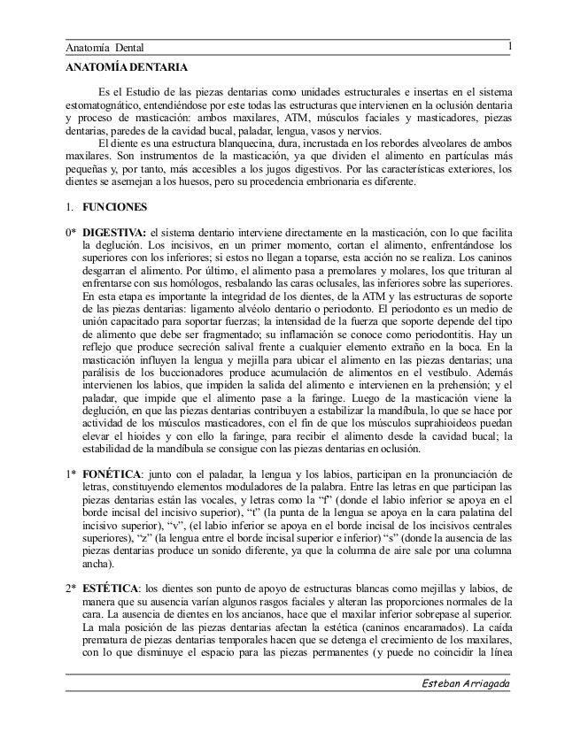 Anatomía Dental                                                                                       1ANATOMÍA DENTARIA  ...