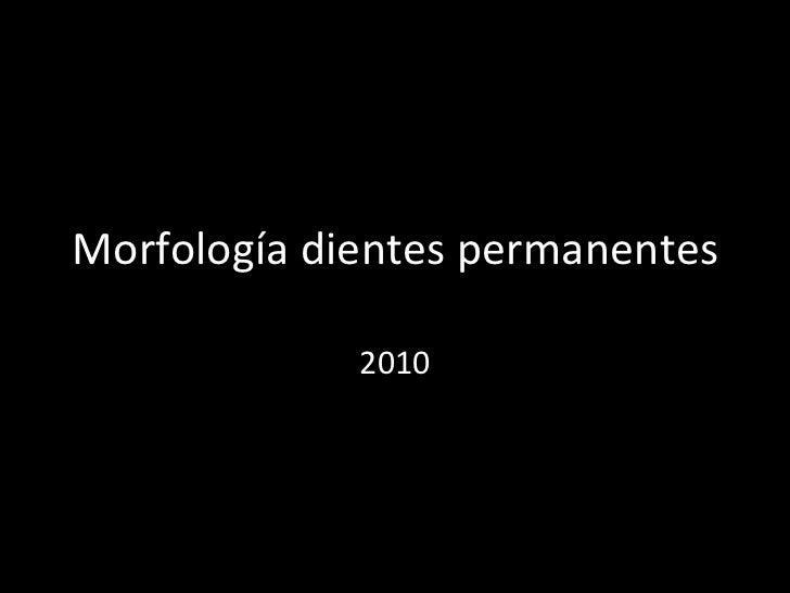 Morfología dientes permanentes 2010