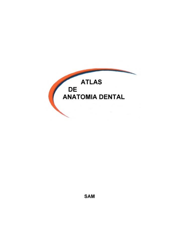 Atlas de anatomia dentaria