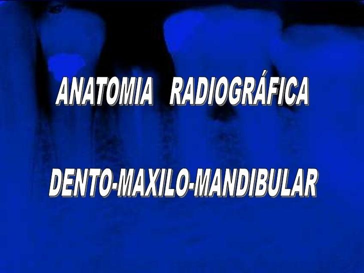 ANATOMIA   RADIOGRÁFICA<br />DENTO-MAXILO-MANDIBULAR<br />