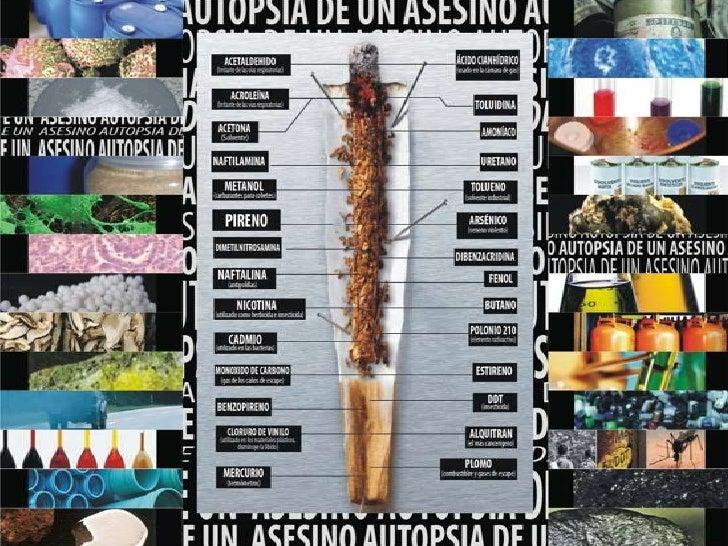 Asombroso La Anatomía De Un Asesinato Friso - Anatomía de Las ...