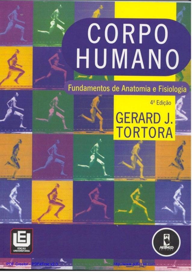 Fundamentos da anatomia e fisiologia humana