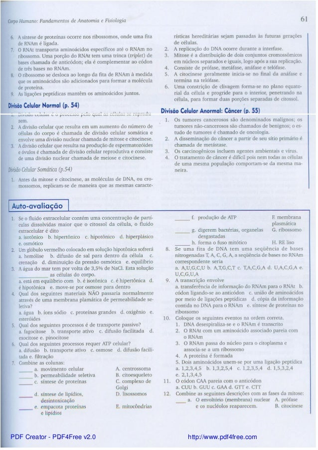 Contemporáneo Anatomía Y Fisiología De Los Libros De Texto Tortora ...