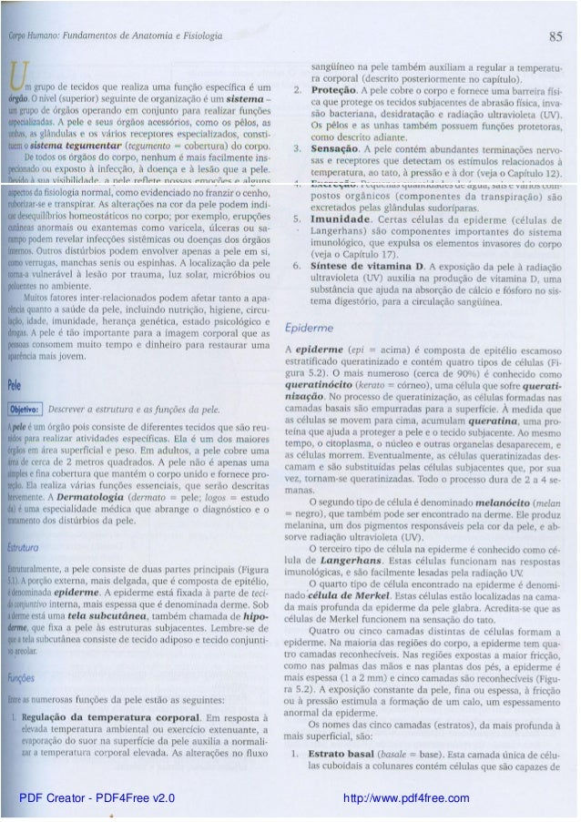 Bonito Anatomía Y Fisiología Pdf Libro De Texto Modelo - Imágenes de ...