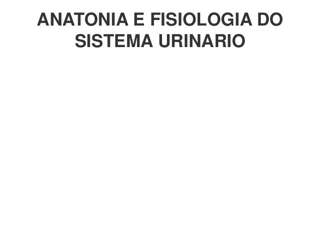 ANATONIA E FISIOLOGIA DO SISTEMA URINARIO