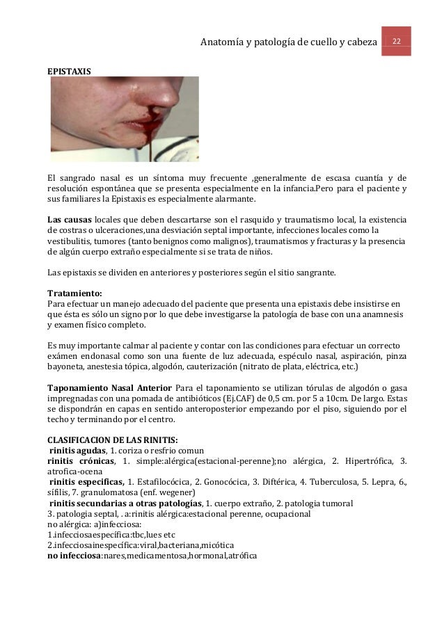 Anatomia e histologia del oido