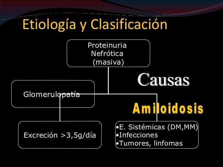 SÍNDROME PROTEINÚRICO-HEMATÚRICO RENAL PRIMARIOCaracterísticas morfológicas:       •Cambios glomerularesCaracterísticas cl...