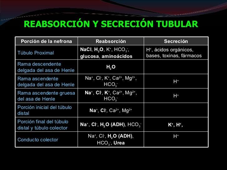 REGULACIÓN EQUILIBRIO ÁCIDO-           BASE                 PH = 7,35 – 7,45                ACIDO = H+ + BASECO2 + H2O    ...