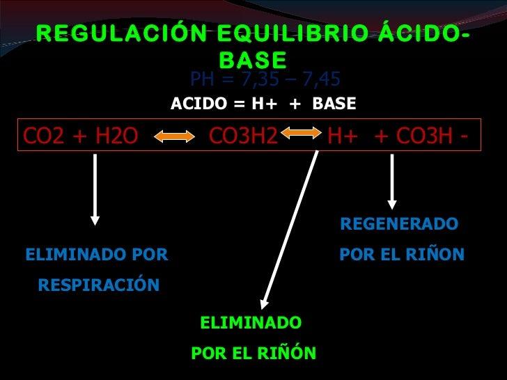 FUNCIONES ENDOCRINAS: SISTEMA RAA La renina se sintetiza en la arteriola aferente (aparato  yuxtaglomerular). La Angiote...