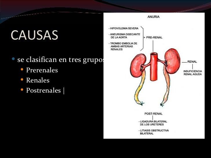 Exploración física: Falta de turgencia, hipotensión ortostática, taquicardia,  perdida de peso                    dx. Hip...