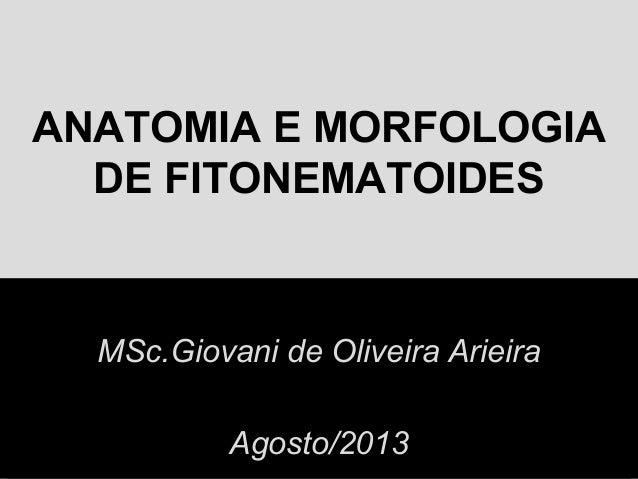 ANATOMIA E MORFOLOGIA DE FITONEMATOIDES MSc.Giovani de Oliveira Arieira Agosto/2013