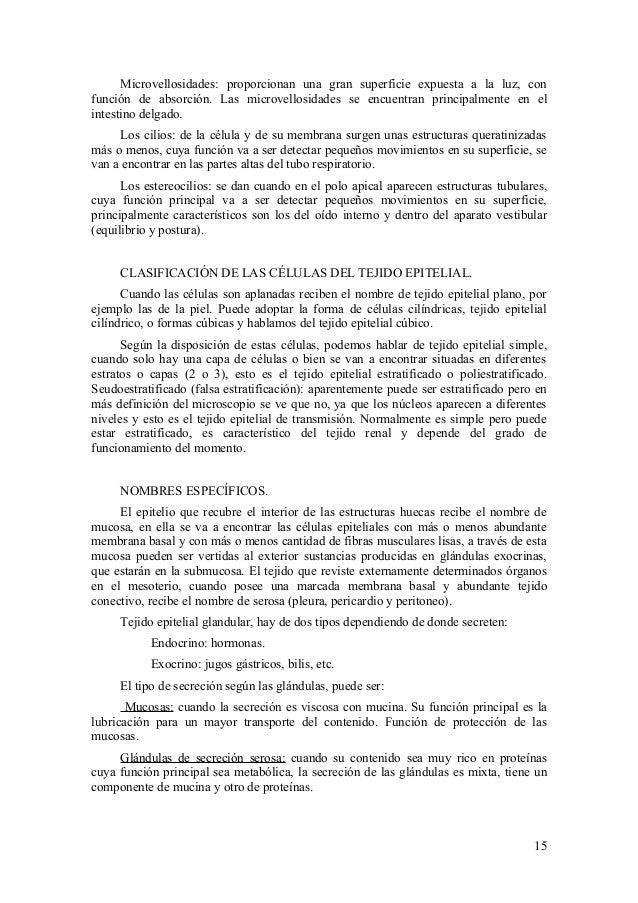 Fantástico La Anatomía Y Fisiología De La Piel De Hoja De Cálculo ...