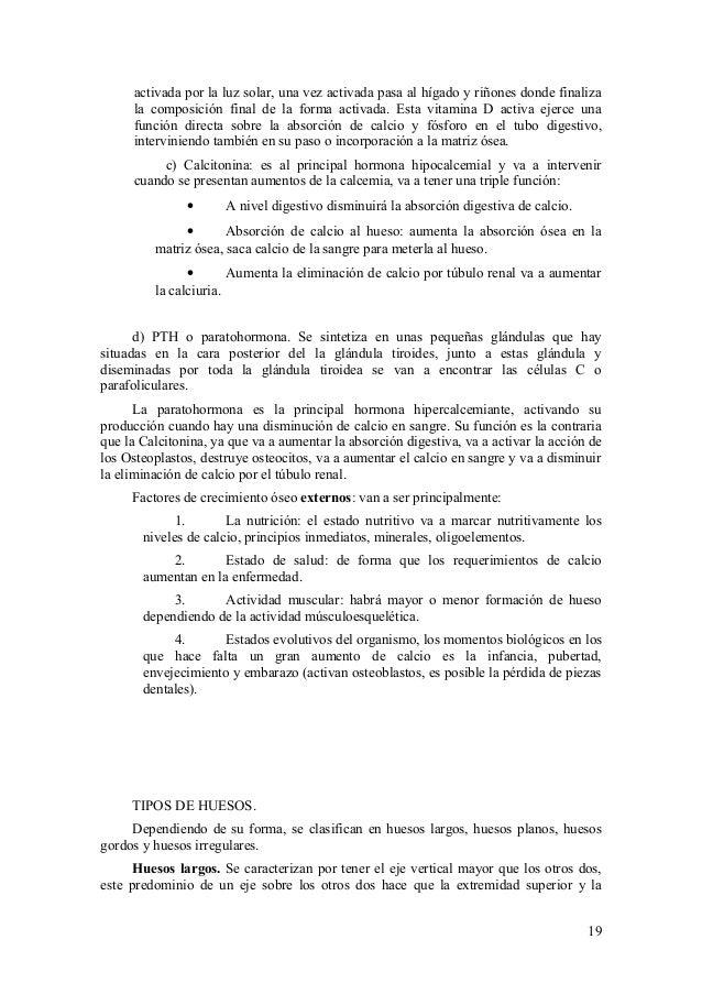 Vistoso La Forma De Estudiar La Anatomía Bruto Ornamento - Imágenes ...