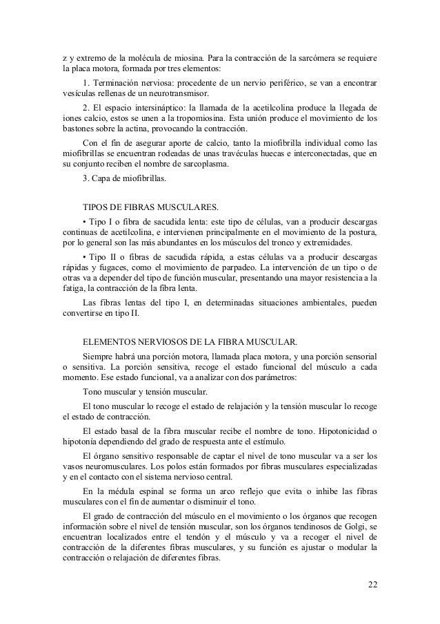 Asombroso Anatomía Y Fisiología Del Tejido Epitelial De La Hoja De ...