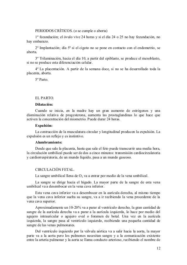 Perfecto La Anatomía Y La Fisiología De La Sangre Adorno - Anatomía ...