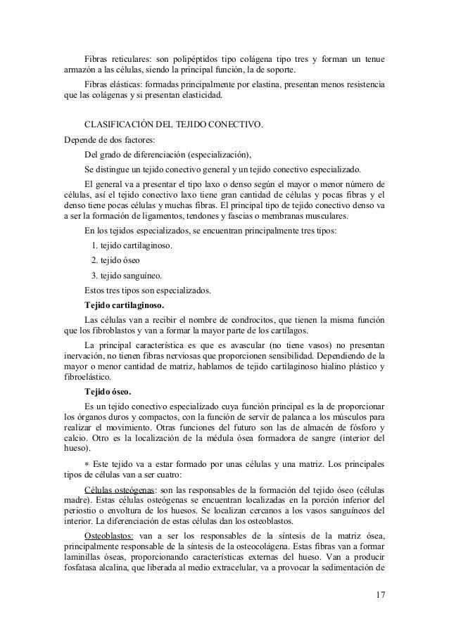 Dorable Tipos De Anatomía Molde - Imágenes de Anatomía Humana ...