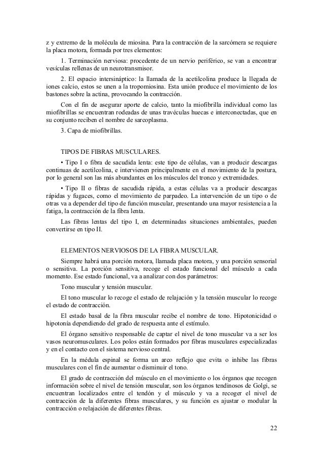 Contemporáneo Estímulo Definición Anatomía Festooning - Anatomía de ...