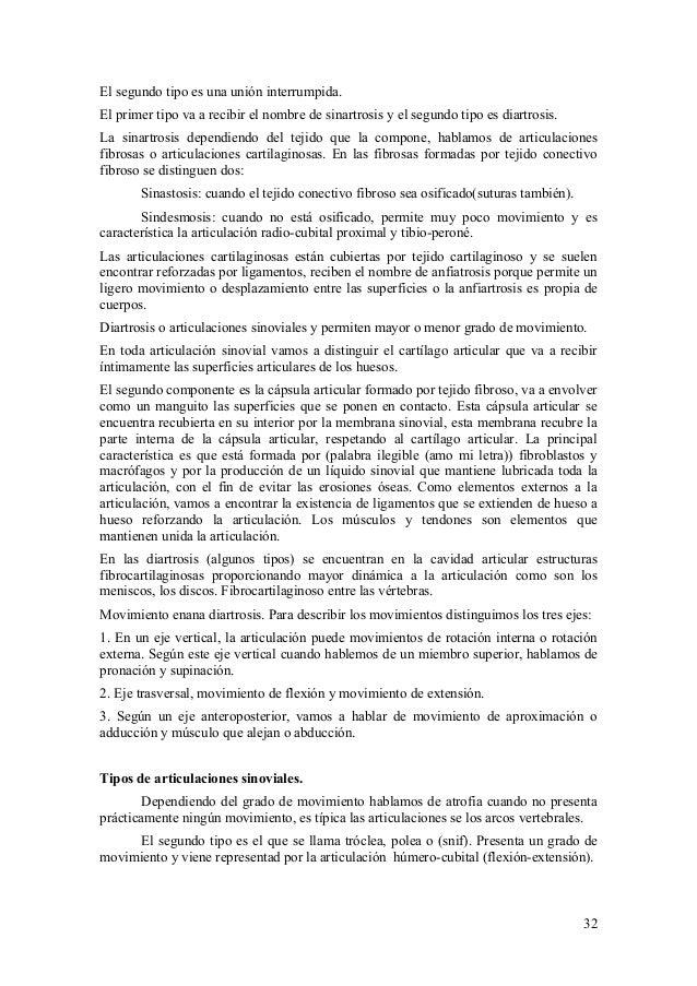 Fantástico Crítica Hoja 32 La Anatomía De Los Vasos Sanguíneos ...