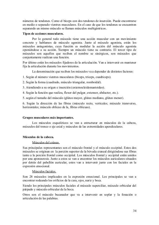 Anatomia fisiologia humana (3)