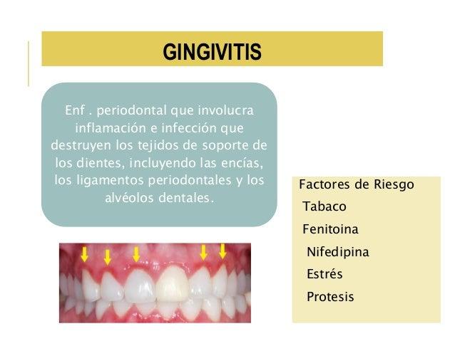 Anatomia fisiologia y patologia de boca y glandulas salivales