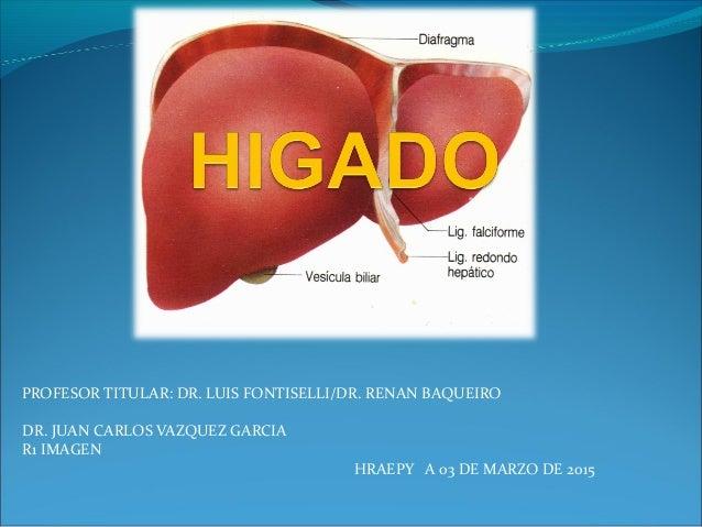 Anatomía hepática y su segmentación