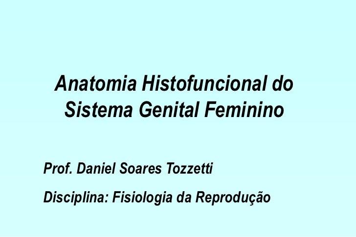 Anatomia Histofuncional do  Sistema Genital FemininoProf. Daniel Soares TozzettiDisciplina: Fisiologia da Reprodução