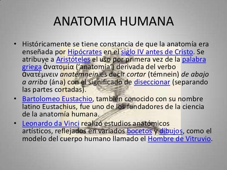 ANATOMIA HUMANA<br />Históricamente se tiene constancia de que la anatomía era enseñada por Hipócrates en el siglo IV ante...