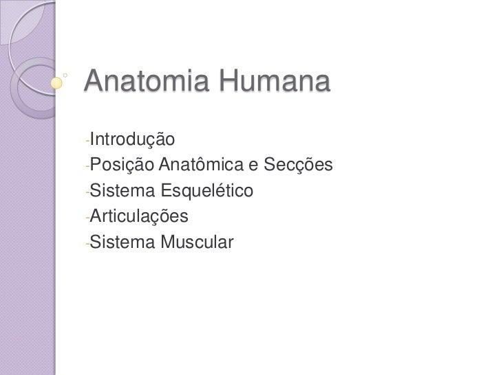 Anatomia Humana-Introdução-Posição Anatômica e Secções-Sistema Esquelético-Articulações-Sistema Muscular