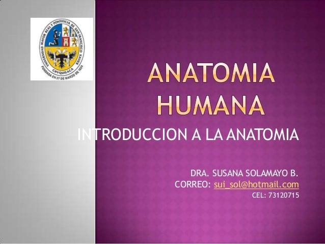 INTRODUCCION A LA ANATOMIA DRA. SUSANA SOLAMAYO B. CORREO: sui_sol@hotmail.com CEL: 73120715
