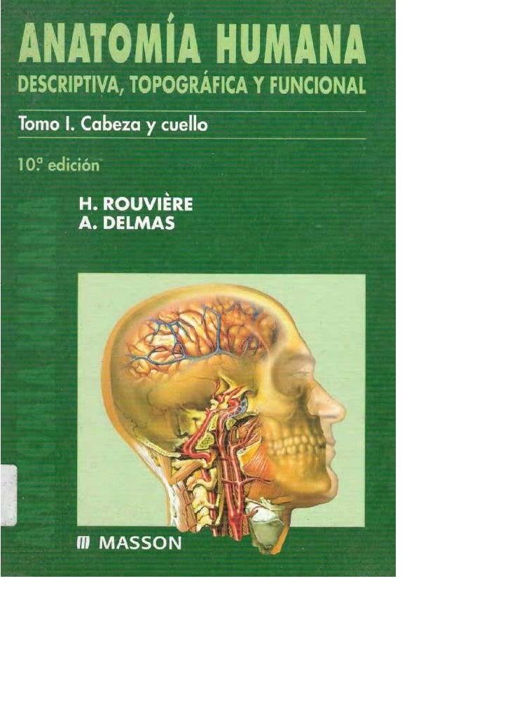 Anatomia humana cabeza y cuello rouviere
