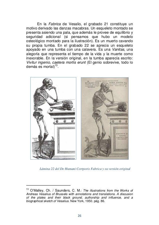Contemporáneo Saunders Tarjetas De Memoria Flash De Anatomía ...