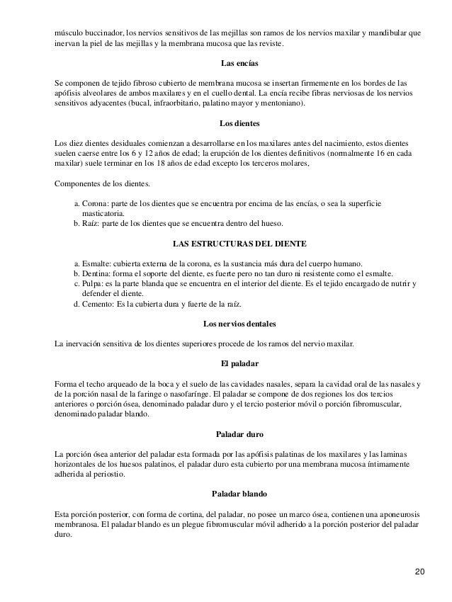 Anatomia humana quiroz gutierrez, fe 1 (1)
