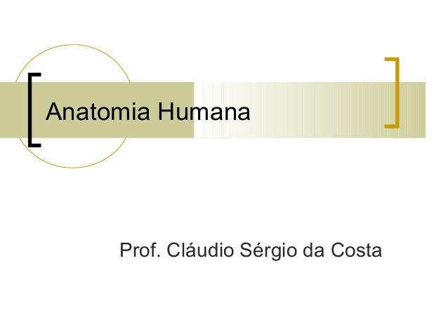 Anatomia Humana Prof. Cláudio Sérgio da Costa