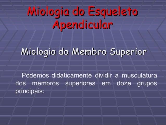 Miologia do Esqueleto Apendicular Miologia do Membro Superior Podemos didaticamente dividir a musculatura dos membros supe...