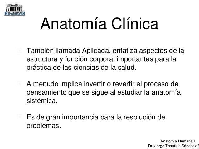 Anatomia. Nomenclatura y terminología