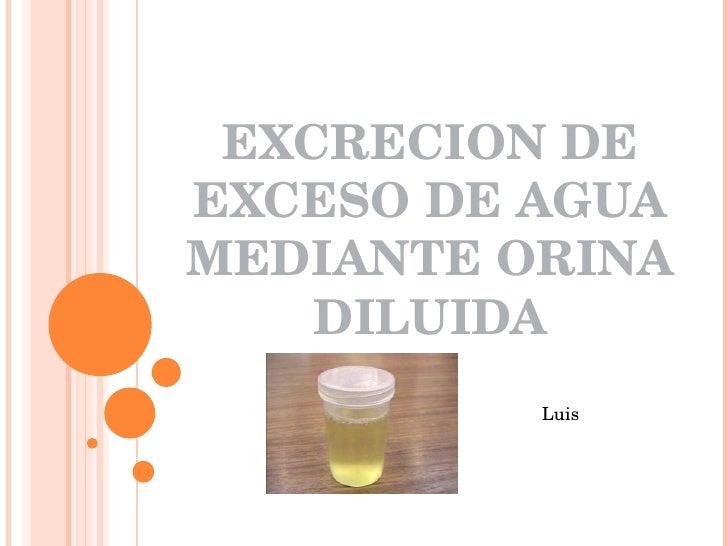 EXCRECION DE EXCESO DE AGUA MEDIANTE ORINA DILUIDA Luis