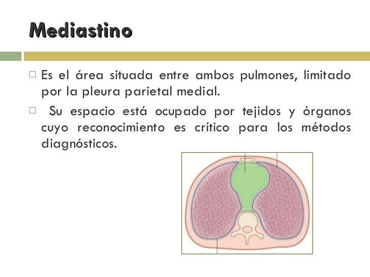 Anatomia Mediastino Slide 2