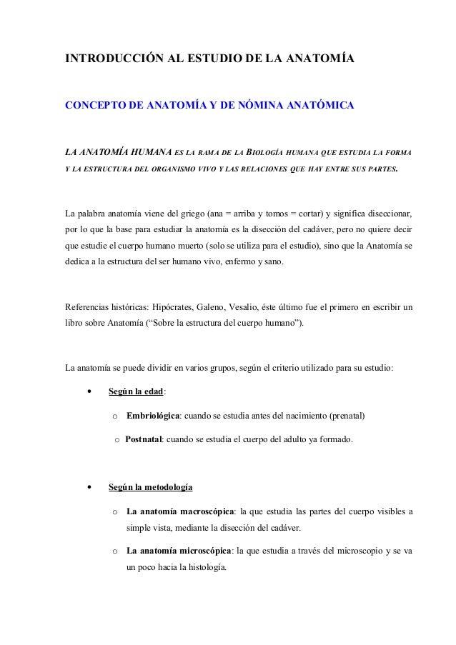 Vistoso Lo Que Quiere Decir Ipsilateral En La Anatomía Colección de ...