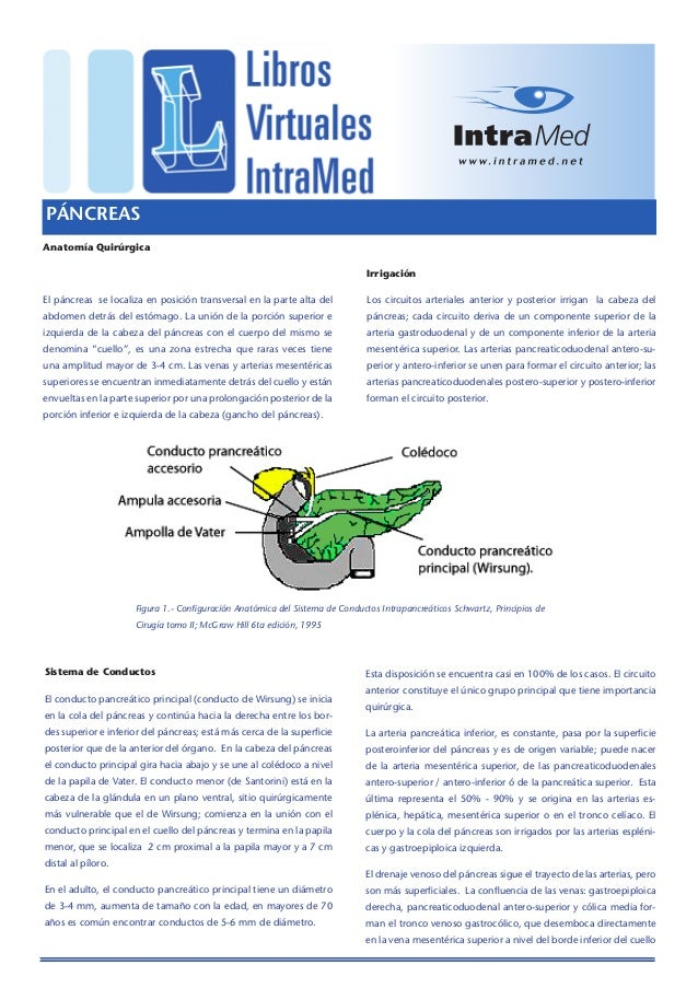 PÁNCREASAnatomía Quirúrgica                                                                              IrrigaciónEl pánc...
