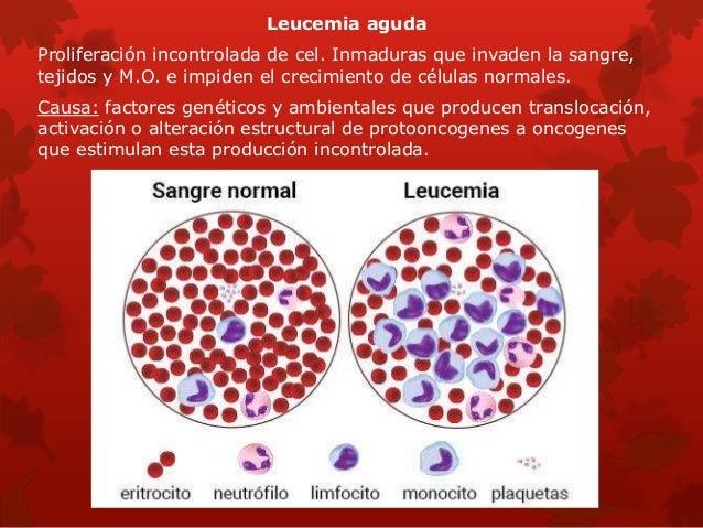 Anatomia patologica de la sangre