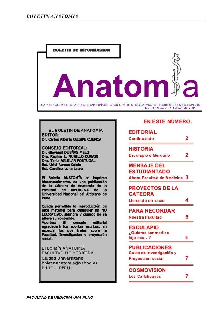 BOLETIN ANATOMIA             BOLETIN DE IMFORMACION             Anatom a     UNA PUBLICACION DE LA CATEDRA DE ANATOMÍA DE ...