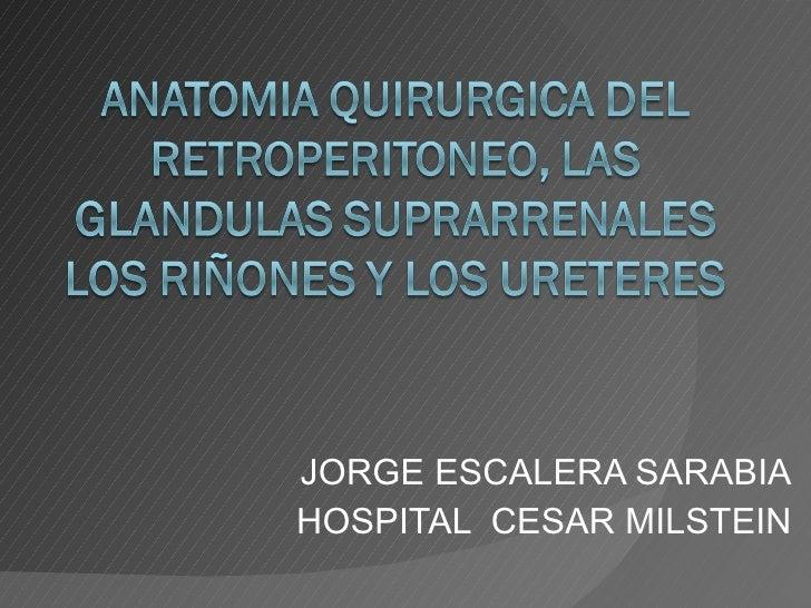 Anatomia quirurgica del retroperitoneo, las glandulas suprarrenales