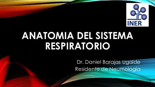 ANATOMIA DEL SISTEMA RESPIRATORIO Dr. Daniel Barajas Ugalde Residente de Neumología