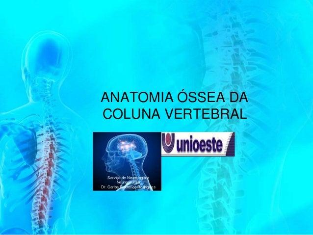 ANATOMIA ÓSSEA DACOLUNA VERTEBRAL    Serviço de Neurologia e         NeurocirurgiaDr. Carlos Frederico Rodrigues